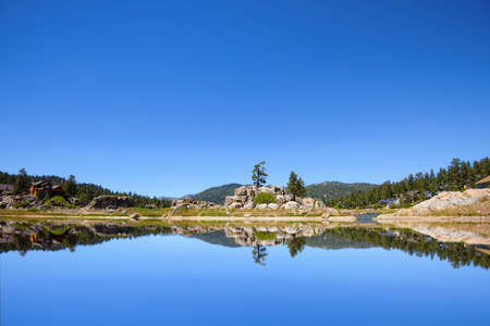 ponderosa pine: Big Bear Lake in the Southern California mountains