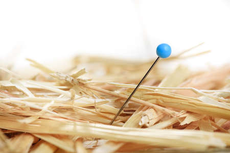 Closeup of a needle in haystack Stock Photo