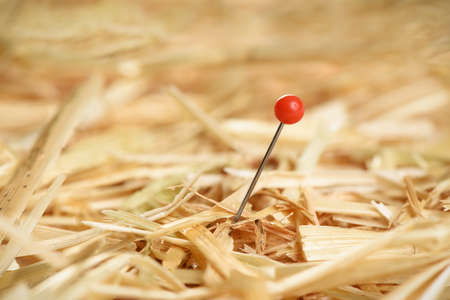 Closeup of a needle in haystack Imagens