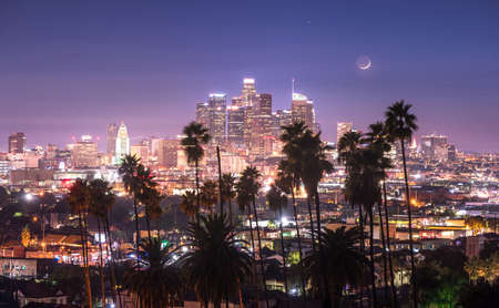 Beautiful night of Los Angeles downtown and palm trees in foreground Reklamní fotografie