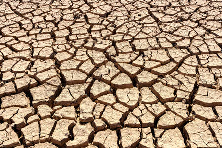 Cracks of the dried soil background Stock Photo - 140245128