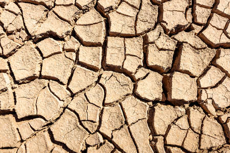 Cracks of the dried soil background