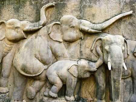africa kiss: elephant