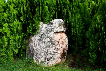 rock and green