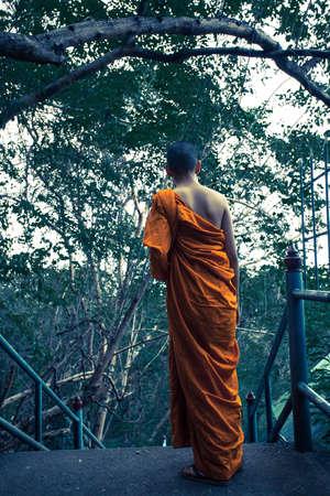 monks: monks activity Stock Photo