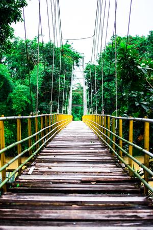 rope bridge: rope bridge