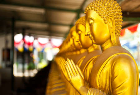 The golden Buddha statue ,thailand photo