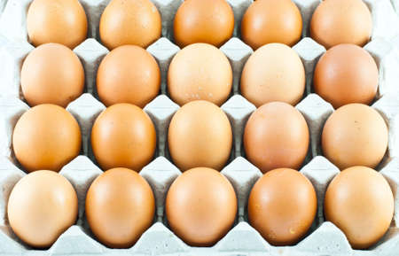 Fresh eggs in carton box  photo