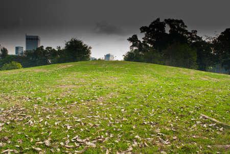 Grassy Hill in Dark sky day photo