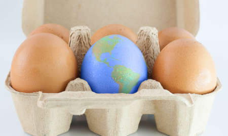 eggs with world earth texture in the package  isolated on white photo