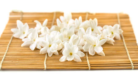 White flowers of jasmine isolated photo