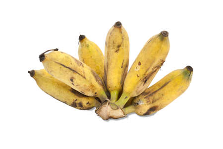 Cultivated banana isolated on white