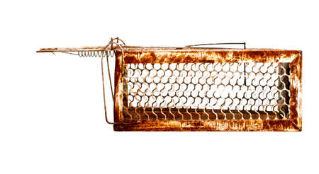 Mousetrap Rat cage white background. photo