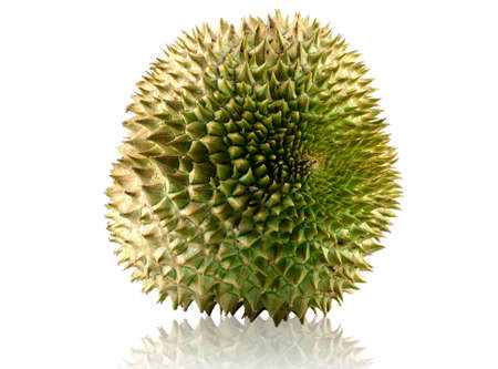 Durian fruit isolated on white background. Stock Photo