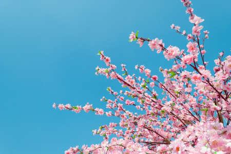 Artificial Sakura flowers, is on blue sky  photo