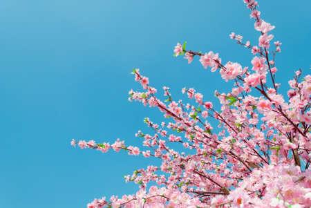 Artificial Sakura flowers, is on blue sky  Stock Photo