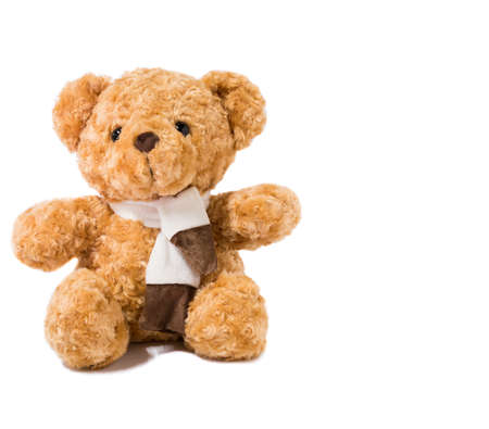 teddy bear over the white background