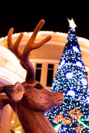 xmas background: Reindeer and Xmas tree background Stock Photo