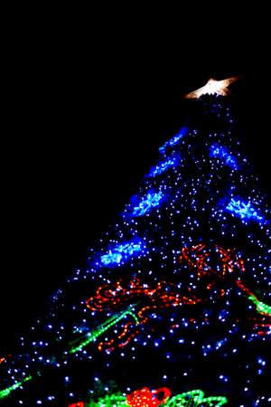 Bokeh of big Christmas light tree  at night