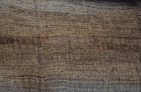 Wood has tiger stripe or curly stripe grain, Afzelia wood exotic beautiful pattern for crafts or abstract art Background texture