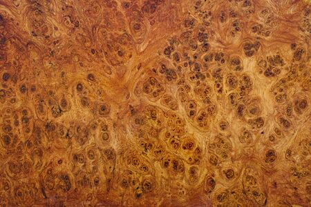 Nature afzelia burl wood striped, Exotic wooden beautiful pattern for crafts or abstract art texture background