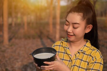 Portrait gardener young asea woman look at a full cup of raw para rubber milk of tree in plantation rubber tapping form Thailand, good farm produce, Hevea brasiliensis Stock fotó