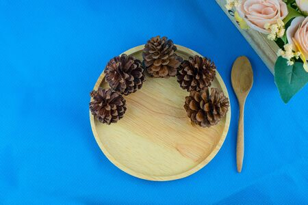 Dry pine cone on wood dish on blue background top view
