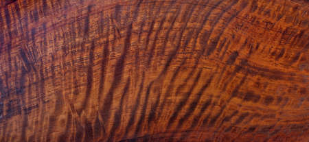 Natural Burma padauk wood has tiger stripe or curly stripe grain texture background surface