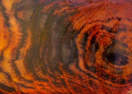 Rosewood tree rings texture background surface with natural pattern Stockfoto