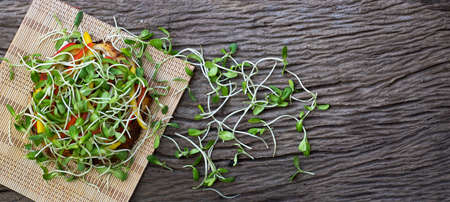 Homemade vegetable pizza with sunflower sprout a wooden table background