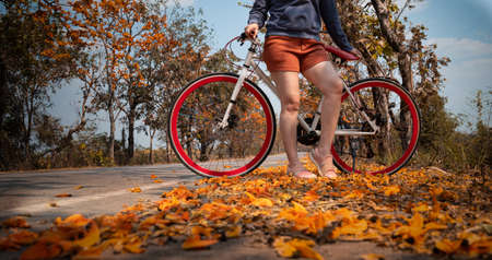 Woman standing next to her bike outdoors at palash tree with full of beautiful orange flower background, Butea Monosperma or Butea frondosa of southeast asia from nature