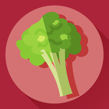 Vector flat cartoon style icon of broccoli cabbage Illustration