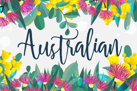 Tropical australian nature background. Vector illustration of eucalyptus leaves and flowers, blooming gum on white backdrop. Horizontal design template for cards, invitations, banners, flyers Çizim