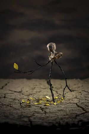 cranny: Scarecrow in the desert watchin a yellow leaf on his arm wich supose to fall off