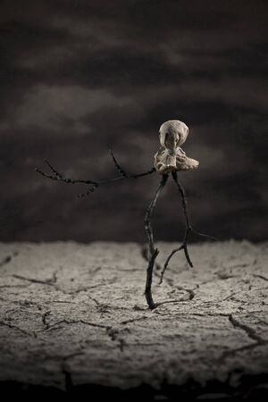 desert storm: Scarecrow in the desert standing alone Stock Photo