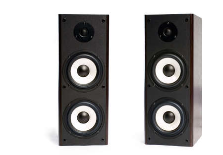 stereo subwoofer: two black speakers on the white background