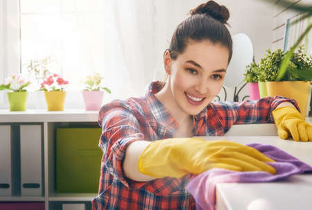 Mulher nova bonita que faz a limpeza da casa. Menina esfrega pó.