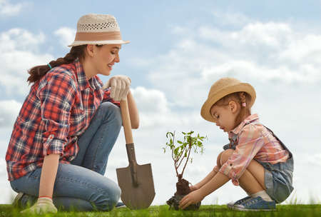 Mom and her child girl plant sapling tree. Spring concept, nature and care. Standard-Bild