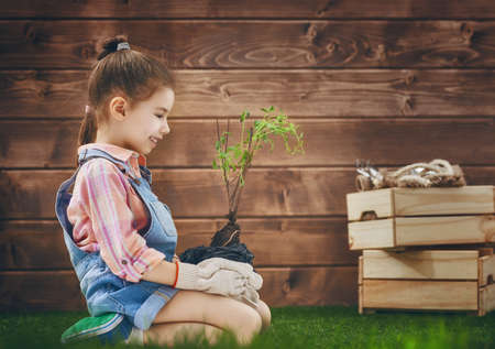 seedling: Cute little child girl cares for plants. Child holding seedling tree. Concept of spring, nature and care.