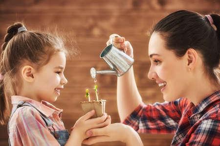 かわいい子女の子は、植物の世話をする母を手伝います。幸せな家族は、裏庭の園芸を行っています。母と娘の成長の芽に水をまきます。春の概念 写真素材