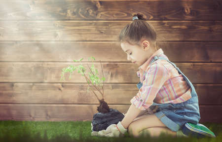 可爱的小女孩照料植物。孩子抱着树苗。春的概念,自然的概念,关怀的概念。