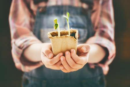Kleines Kind kümmert sich um Pflanzen. Frühling Konzept, Natur und Pflege.