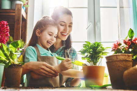 귀여운 자식 소녀 식물을 돌보는 그녀의 어머니를하는 데 도움이됩니다. 엄마와 그녀의 딸은 집에서 창 근처에 원예에 종사. 봄 날에 행복 한 가족입니