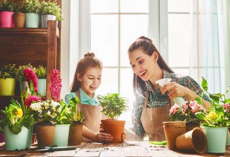 mama e hija: linda chica niño ayuda a su madre a cuidar las plantas. Madre y su hija dedican a la jardinería cerca de la ventana en casa. Familia feliz en día de primavera. Foto de archivo