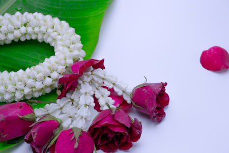 Fresh flower garland used on Mother`s Day and Songkran day in Thai tradition. Stock Photo