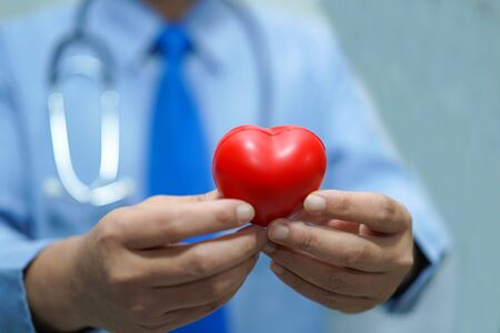 Asian smart man doctor holding a red heart, healthy strong medical concept.