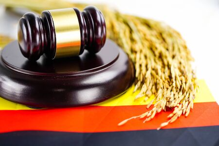 Germany flag and Judge hammer with gold grain from agriculture farm. Law and justice court concept. Stok Fotoğraf