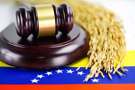 Venezuela flag and Judge hammer with gold grain rice from agriculture farm. Law and justice court concept.