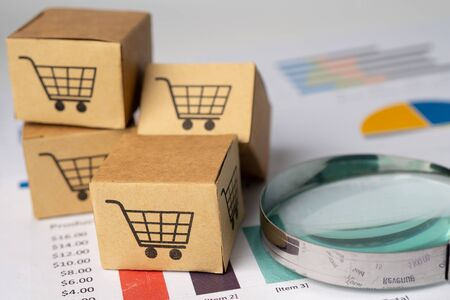 Shopping cart logo on box with magnifying glass on graph background. Banking Account, Investment Analytic research data economy, trading, Business import export transportation online company concept. Foto de archivo