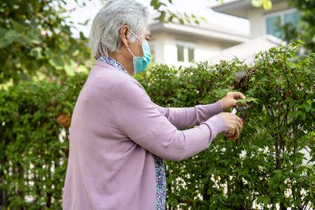 Asian senior or elderly old lady woman wearing mask to taking care of the garden in house, hobby to relax and exercising with happy.